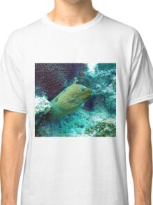Green Moray Eel  Classic T-Shirt