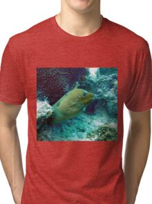 Green Moray Eel  Tri-blend T-Shirt