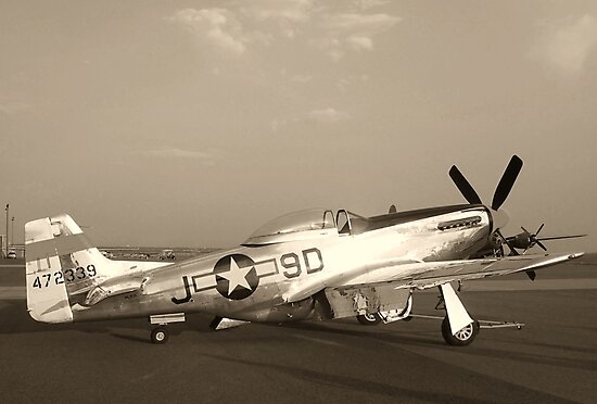 P-51 Mustang Fighter Plane - Classic War Bird by Amy McDaniel