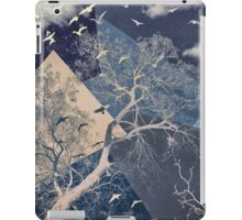The Sky iPad Case/Skin