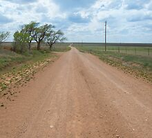 "Jericho Gap, a.k.a. ""Dirt 66"" on Route 66, Alanreed, TX by swtrekker"