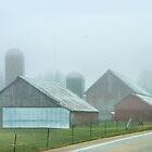 Vintage Barns in Fog by Nadya Johnson