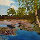 Hatchet Pond by Pam Wilkie