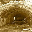 Old Brickworks. Park. Erskineville. N.S.W.  by VenturAShot