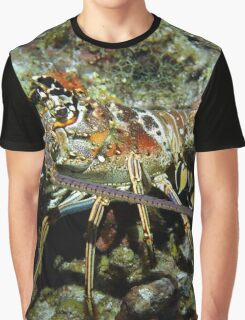 Caribbean Reef Lobster in Color Graphic T-Shirt