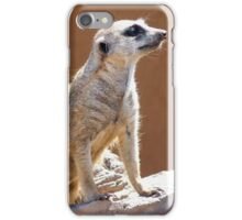 Meerkat posing in the Sun iPhone Case/Skin