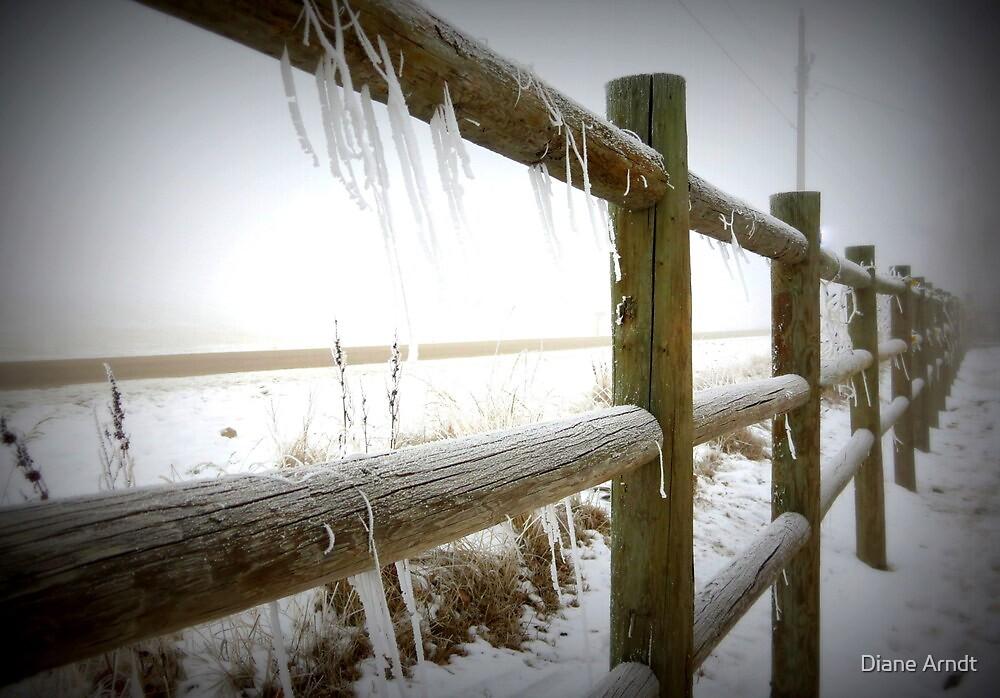Freezing Fenceline by Diane Arndt