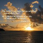 Psalm 27 1 The Lord Is My Light by Susan Savad
