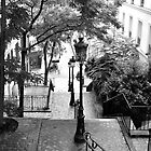 Steps in Montmatre by David Perrin