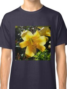 Sunlight filtering through Yellow Day Lilly Flower Classic T-Shirt