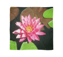 Fuchsia Pink Water Lilly Flower floating in Pond Scarf
