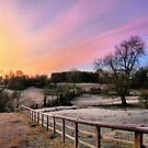 All the colours of the sunrise by Cat Perkinton