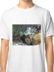Caribbean Reef Octopus in Coral Reef home Classic T-Shirt