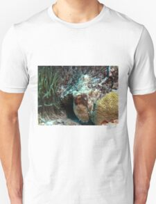 Caribbean Reef Octopus in Coral Reef home Unisex T-Shirt