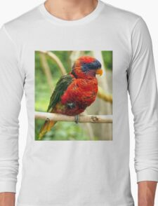 Rainbow Colored Lorikeet Bird posting in a Tree Long Sleeve T-Shirt