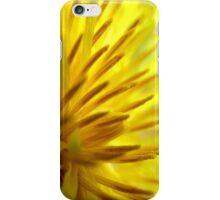 Dandelion Macro iPhone Case/Skin