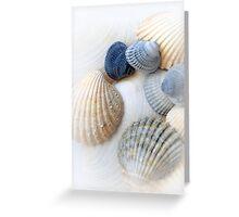 Just Sea Shells Greeting Card