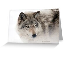 ...see you next week my friend Wolf.... Greeting Card