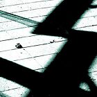 Shadows on the Floor  by PictureNZ