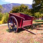 The Old Apple Cart by Glenn McCarthy