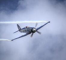 Hawker Sea Fury  by Nigel Bangert