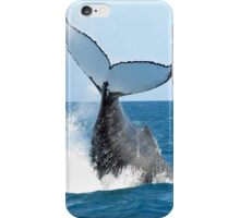 Whale Adventure (Phone) iPhone Case/Skin