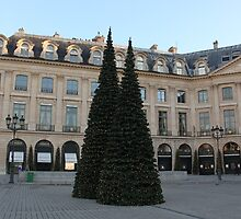Christmas Tree on Place Vendome, Paris by Elena Skvortsova