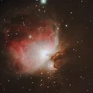 M42 - The Orion Nebula by Barry Armstead