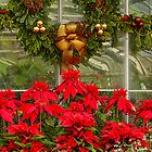 Christmas Expressions by Marilyn Cornwell