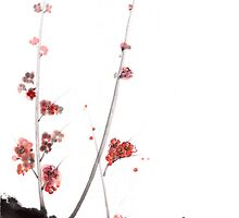 Sakura cherry blossom orange pink red flowers tree watercolor original ink painting by Mariusz Szmerdt