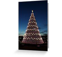 National Christmas Tree, Washington DC Greeting Card