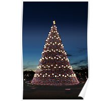National Christmas Tree, Washington DC Poster