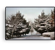 South Korea in Winter Canvas Print