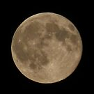 Blood moon  by Jan Carlton