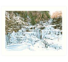 Paupack Falls Art Print