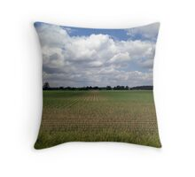 A Good Day in the Midwest 2 Throw Pillow
