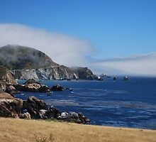 Big Sur Overview by sarahlizwills