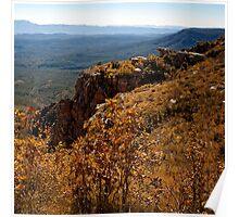 Mogollon Rim Country Autumn View Poster