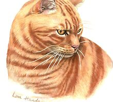 Ginger Tabby by HandsonHart