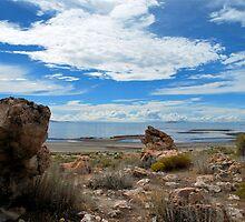 Antelope Island Rocks by sarahlizwills