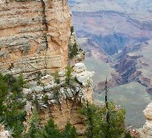 South Rim Edge and Rock Grand Canyon by Lee Craig