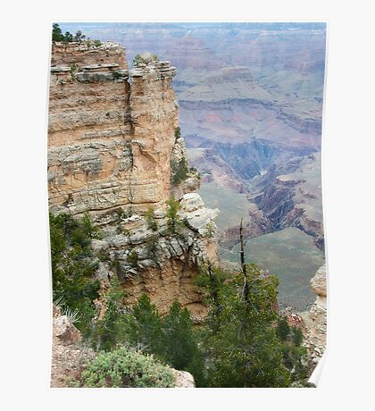 South Rim Edge and Rock Grand Canyon Poster