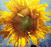 Sunflower Grunge by ArtChick