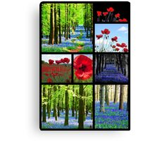 Bluebells And Poppies Canvas Print