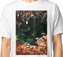 Fall leaves in HotSpring Classic T-Shirt