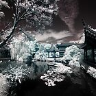 Wall art fine art infrared photography Portland Chinese Garden - Immaginando l'Oriente by visionitaliane
