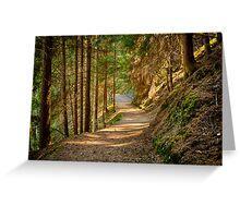 Path in an alpine forest lit by the sun naturalistic landscape color fine art - Sui sentieri degli Elfi Greeting Card