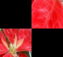 Mottled Red Poinsettia 1 Ephemeral Blank Q2F0 Sticker