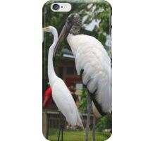 A Wood Stork standing next to a White Heron iPhone Case/Skin