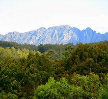 photography - mt roland, tasmania by kukkamoon